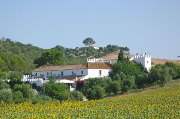 Hacienda Hotel for sale in Andalusia Surrounded by