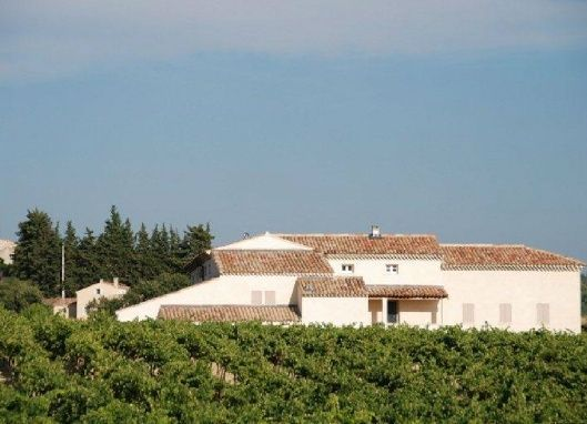 For Sale Large Country Property with vineyard and