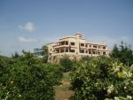 Excellent Finca for sale on  200 000 m2 plot only