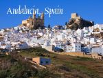 Top Hotel Andalusia spain 7,5% Yield on the beach