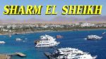 Dream Resort 4* for rent in SHARM EL SHEIKH 190+